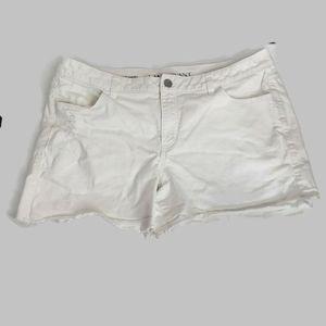 Lane Bryant Weekend Short White Jean Shorts 18